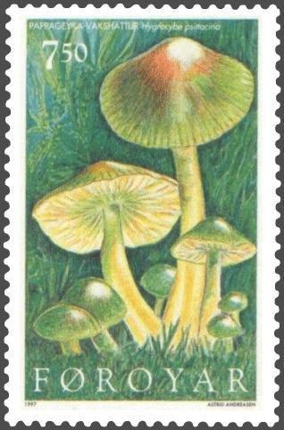 Hygrocybe psittacina Stamp