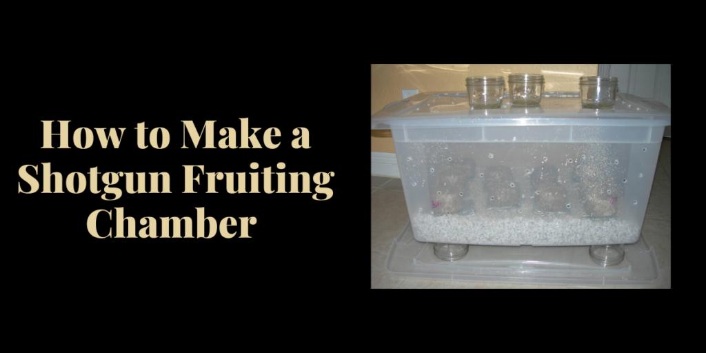 Shotgun Fruiting Chamber