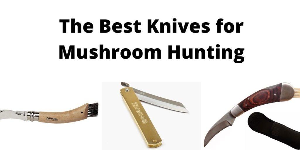 Best Knives for Mushroom Hunting