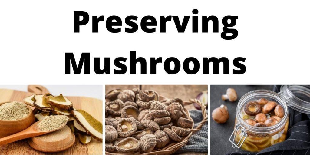 Preserving Mushrooms