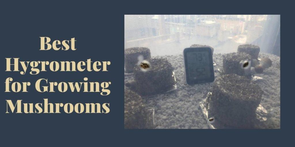 Hygrometer for Mushrooms