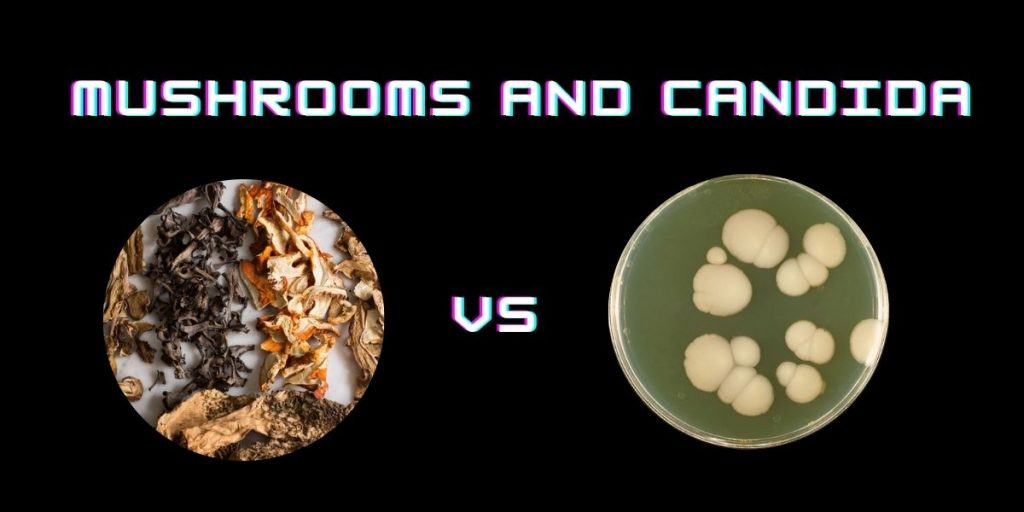Mushrooms and Candida