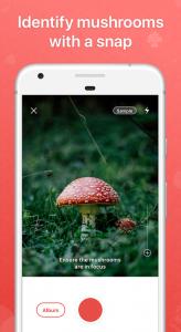 Picture Mushroom App